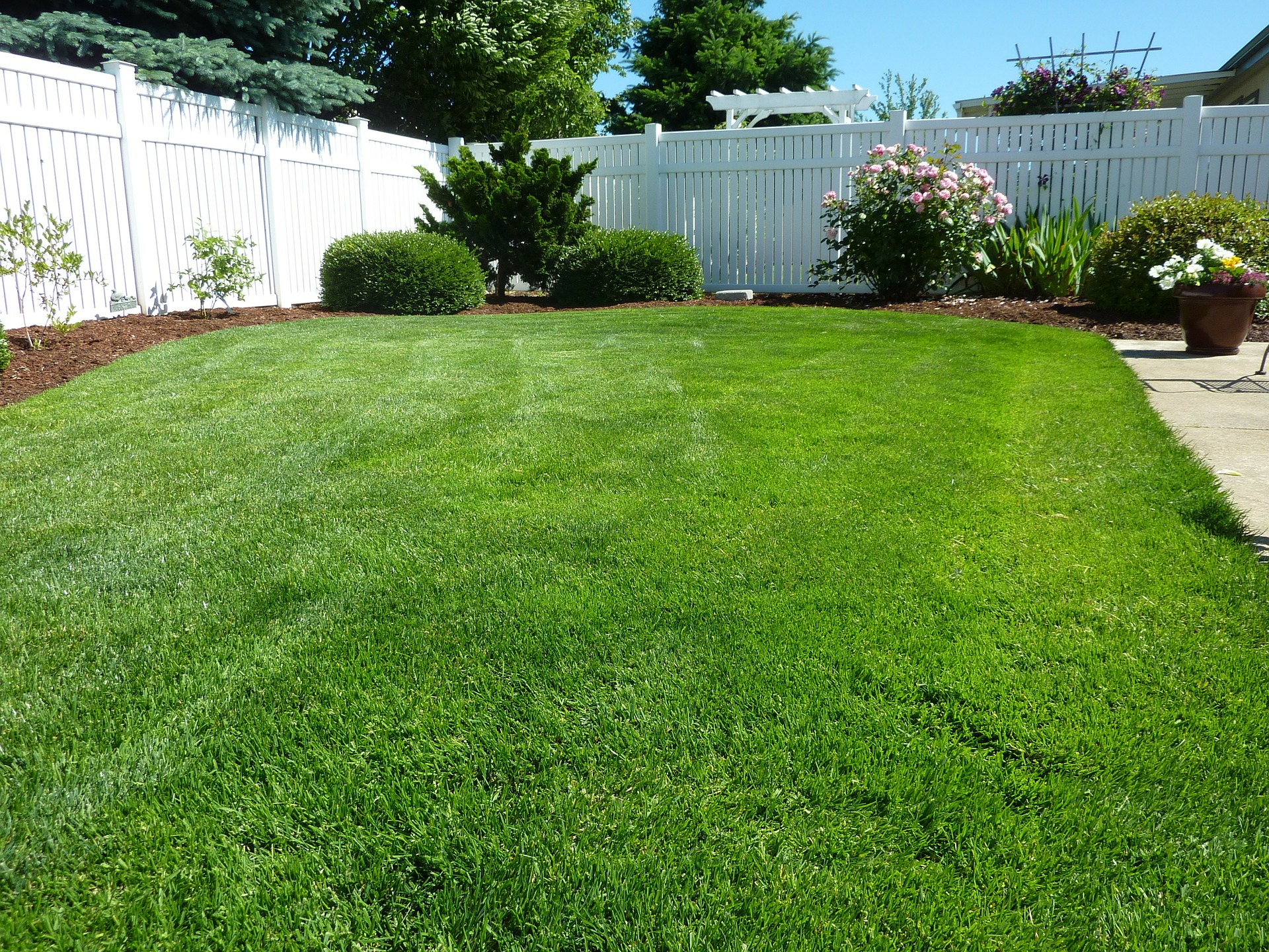 Thicken Existing Turf
